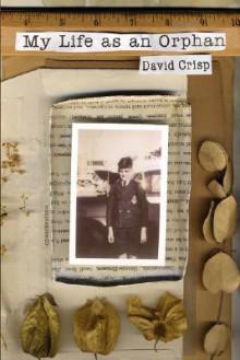 My Life as an Orphan - David Crisp