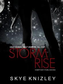 Stormrise - Skye Knizley