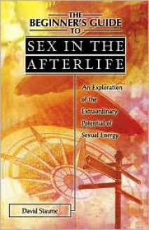 The Beginner's Guide to Sex in the Afterlife - David Staume