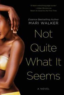 Not Quite What It Seems - Mari Walker