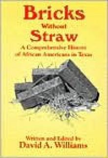 Bricks Without Straw - David A. Williams