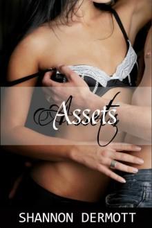 Assets (Balance Sheet #1) - Shannon Dermott