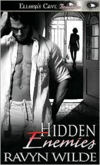 Hidden Enemies - Ravyn Wilde