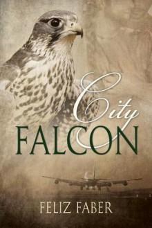City Falcon - Feliz Faber
