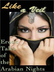Like a Veil: Erotic Tales of the Arabian Nights - Cecilia Tan