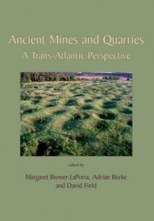 Ancient Mines and Quarries: A Trans-Atlantic Perspective - Adrian Burke, David Field, Margaret Brewer-LaPorta