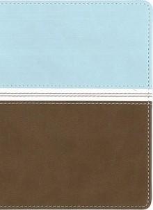 NVI UF Compacta, dos tonos, aguamarina/marron - Vida Publishers