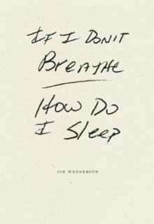 If I Don't Breathe How Do I Sleep - Joe Wenderoth