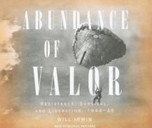 Abundance of Valor: Resistance, Survival, and Liberation: 1944-45 - Will Irwin, Michael Prichard