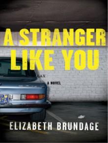 A Stranger Like You: A Novel - Elizabeth Brundage