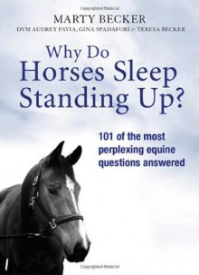 Why Do Horses Sleep Standing Up? - Marty Becker