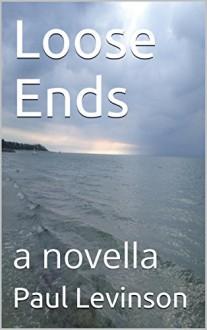 Loose Ends (Jeff Harris Book 1) - Paul Levinson