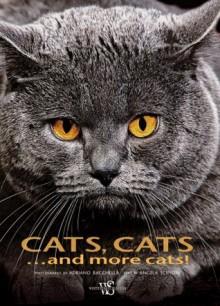 Cats, Cats...and Cats! - Adriano Bacchella, Angela Scipioni