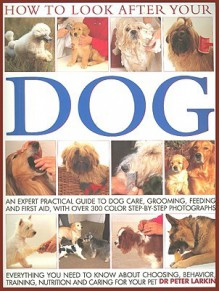 How to Look After Your Dog - Peter Larkin