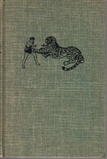 Bomba the Jungle Boy: The Moving Mountain - Roy Rockwood