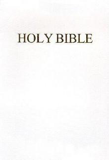 Fireside Catholic Companion Bible-Nab - Anonymous