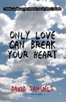 Only Love Can Break Your Heart - David Samuels
