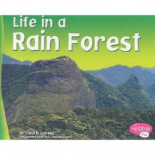Life in a Rain Forest - Carol K. Lindeen