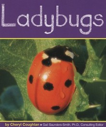 Ladybugs (Insects) - Cheryl Coughlan