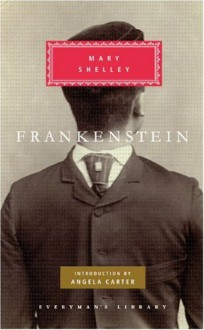 Frankenstein - Mary Shelley, Wendy Lesser