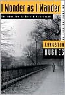I Wonder as I Wander: An Autobiographical Journey - Langston Hughes, Arnold Rampersad