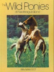 The Wild Ponies of Assateague Island - Donna K. Grosvenor