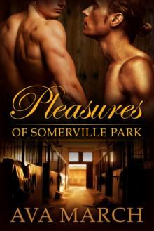 Pleasures of Somerville Park - Ava March