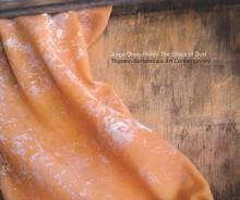 Jorge Otero-Pailos: The Ethics of Dust: Thyssen-Bornemisza Art Contemporary - Eva Ebersberger, Daniel Birnbaum, Daniela Zyman