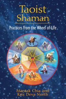 Taoist Shaman: Practices from the Wheel of Life - Mantak Chia, Kris Deva North