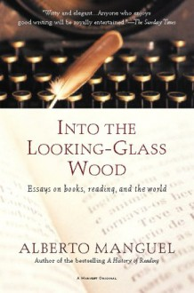 reflections through the looking glass essay