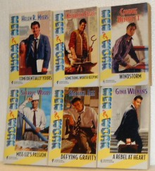 Windstorm/Confidentially Yours/Defying Gravity/A Rebel at Heart/Miss Liz's Passion/Something Worth Keeping (Harlequin Men at Work Series 4,6,9,13,14 & 39) - Connie Bennett, Helen R. Myers, Rachel Lee, Gina Wilkins, Sherryl Woods, Kathleen Eagle