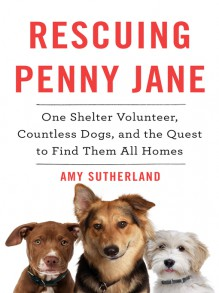 Rescuing Penny Jane: One Shelter Volunteer, Countless Dogs, and the Quest to Find Them All Homes - Amy Sutherland