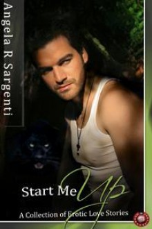 Start Me Up: A Collection of Erotic Love Stories - Angela R. Sargenti