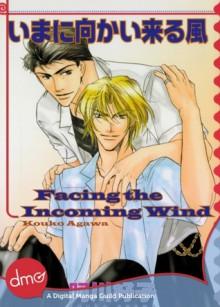 Facing the Incoming Wind - Kouko Agawa