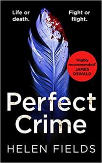 Perfect Crime - Helen Sarah Fields