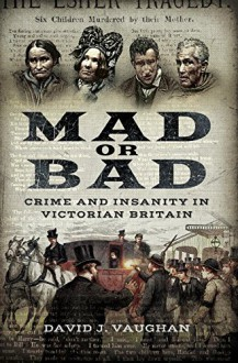 Mad or Bad: Crime and Insanity in Victorian Britain - David J. Vaughan