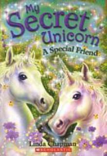 A Special Friend - Linda Chapman, Biz Hull