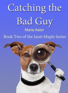 Catching the Bad Guy - Marie Astor