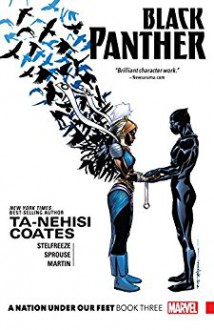 Black Panther: A Nation Under Our Feet Vol. 3 (Black Panther (2016-)) - Brian Stelfreeze,Ta-Nehisi Coates