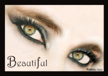 Chasing Beautiful (Chasing Series) - Pamela Ann