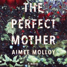 The Perfect Mother - Aimee Molloy,Cristin Milioti