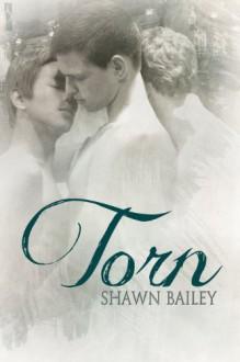 Torn - Shawn Bailey