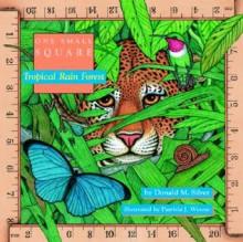 Tropical Rain Forest - Donald M. Silver