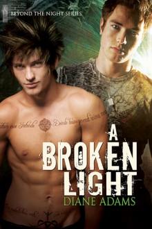 A Broken Light - Diane Adams