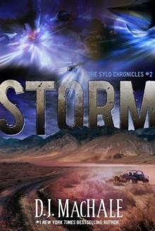 Storm - D.J. MacHale