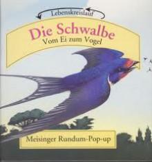 Die Schwalbe. Vom Ei zum Vogel. Lebenskreislauf - David Hawcock