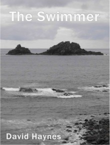 The Swimmer - David Haynes