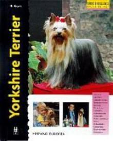 Yorkshire Terrier (Excellence) - Rachel Keyes