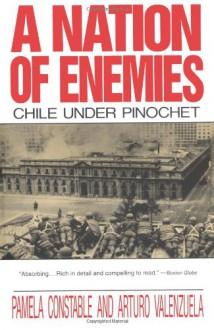 A Nation of Enemies: Chile under Pinochet - Pamela Costable, Arturo Valenzuela
