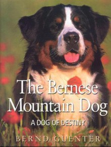 The Bernese Mountain Dog: A Dog of Destiny - Bernd Guenter